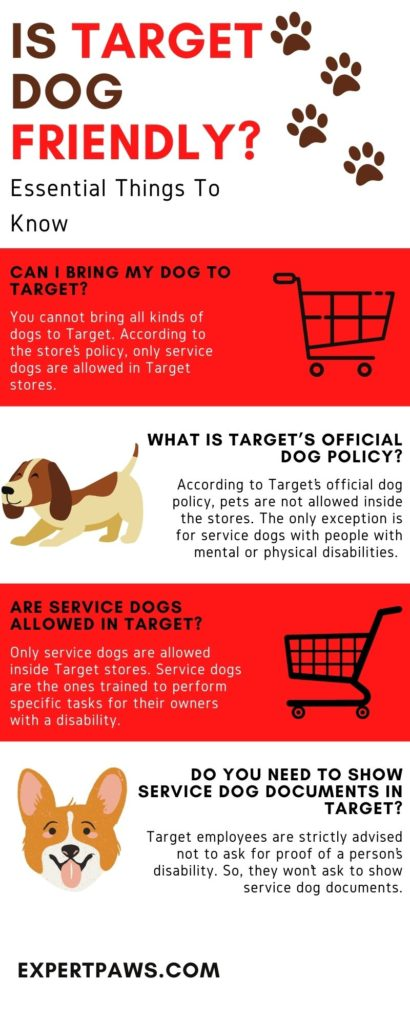 Is Target Dog Friendly?